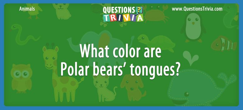 Animals Trivia Questions color Polar bears tongues