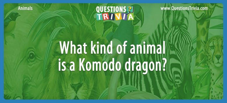 What kind of animal is a komodo dragon?