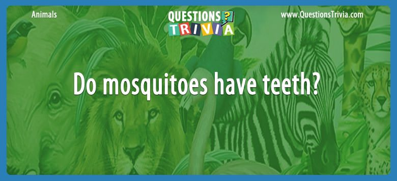 Do mosquitoes have teeth?