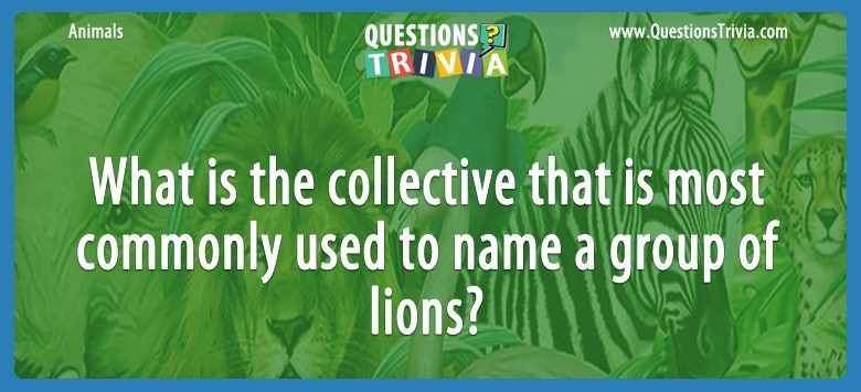 Animals Trivia Questions name for gorup of linons