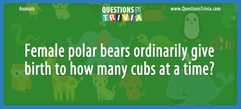 Animals Trivia Questions polar bears how many cubs