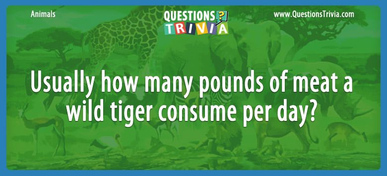 Animals Trivia Questions tiger meat pre day