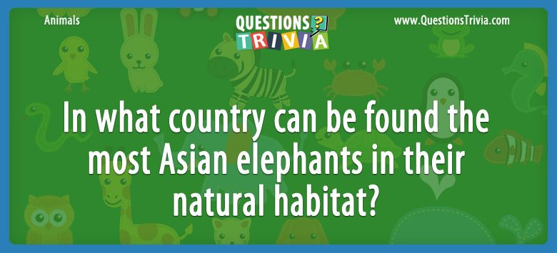 Animals Trivia Questions what country Asian elephants 1
