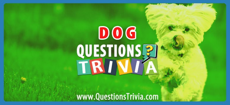 Dog Trivia Category