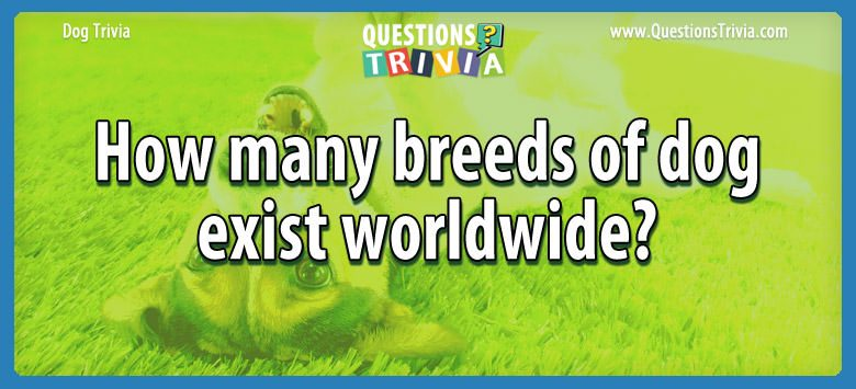 Dogd Trivia Questions breeds dog exist worldwide