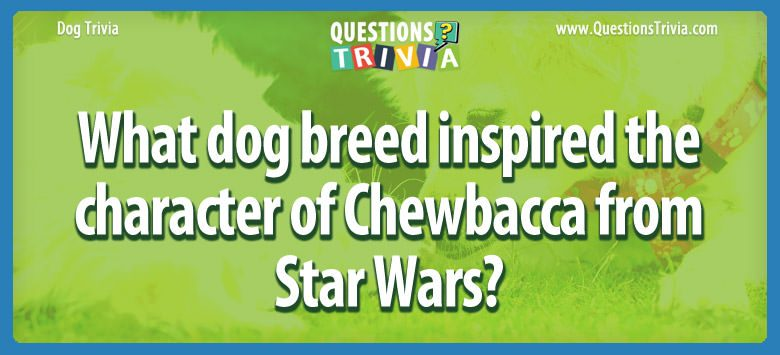 Dogd Trivia Questions dog breed inspired character chewbacca star wars