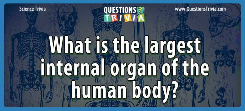 Science Trivia Questions largest internal organ