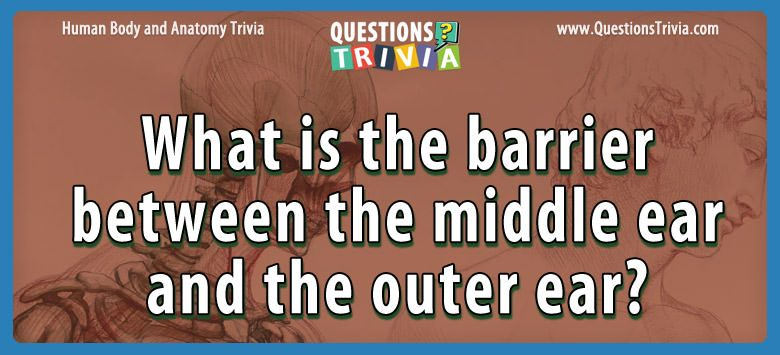 Body Trivia barrier middle ear outer ear