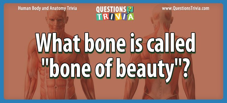 Body Trivia bone called bone beauty