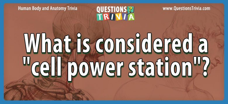 Body Trivia considered cell power station