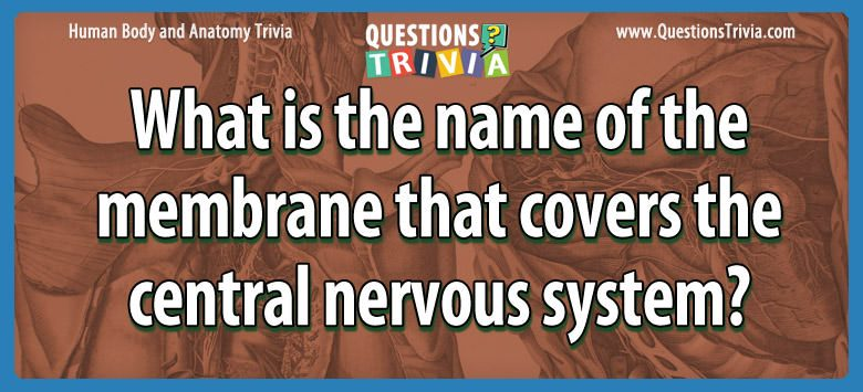 What is the name of the membrane that covers the central nervous system?