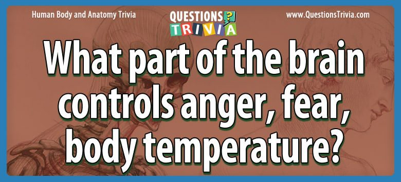 Body Trivia part brain controls anger fear body temperature