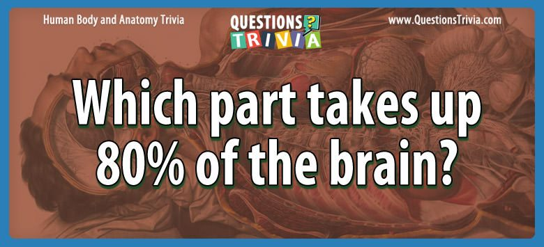 Body Trivia part takes 80brain