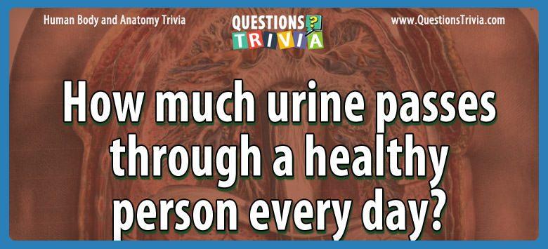 Body Trivia urine passes healthy person day