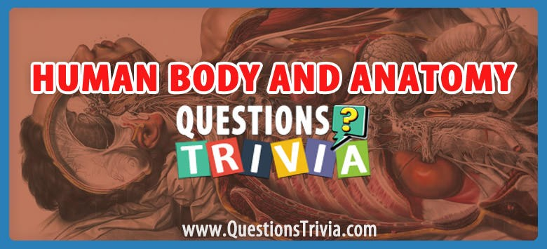 Human Body and Anatomy Trivia Questions and Answers