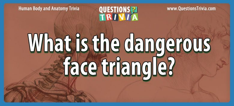 Body Trivia what is the dangerous face triangle