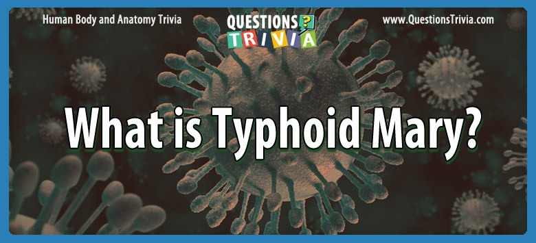 Body Trivia typhoid mary