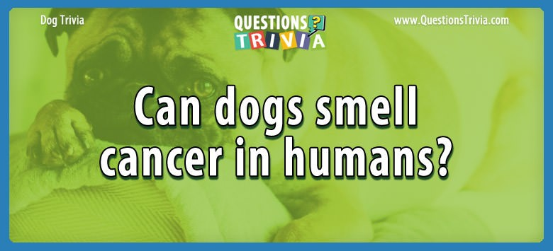 Can dogs smell cancer in humans?